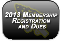 2013 dues